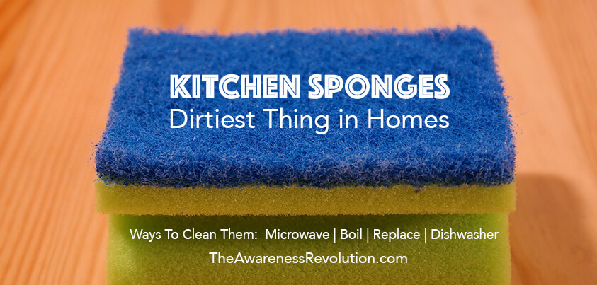 Kitchen Sponges Dirtiest Thing & How To Clean Them