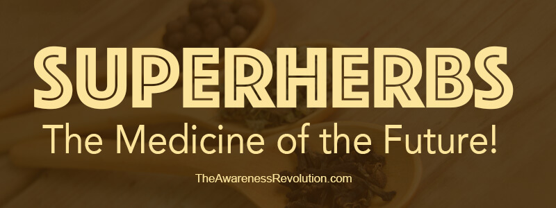SuperHerbs Medicine of the Future!