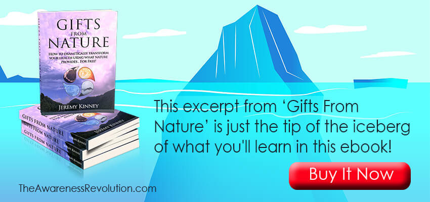 Excerpt From Gifts From Nature