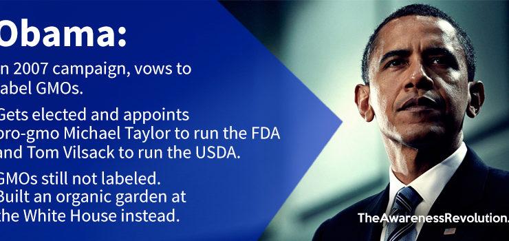 Obama's Broken Vow To Label GMOs